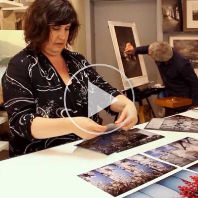 Fertile Images + Design (Artist Documentary)